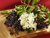 elder berries and blossum